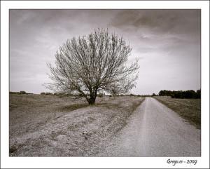 La Felicidad Es El Camino Por Eduardo Galeano Blog De