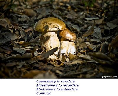 >Foto frase de Confucio 2