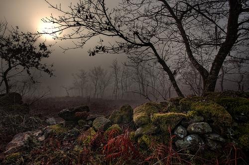SHIN JIN MEI  – Poema de la Fe en el Espíritu