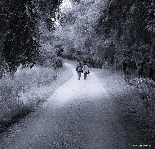 AMAR REALMENTE, por Shantideva