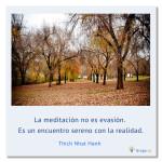 LA MEDITACIÓN NO ES EVASIÓN, por Thich Nhat Hanh