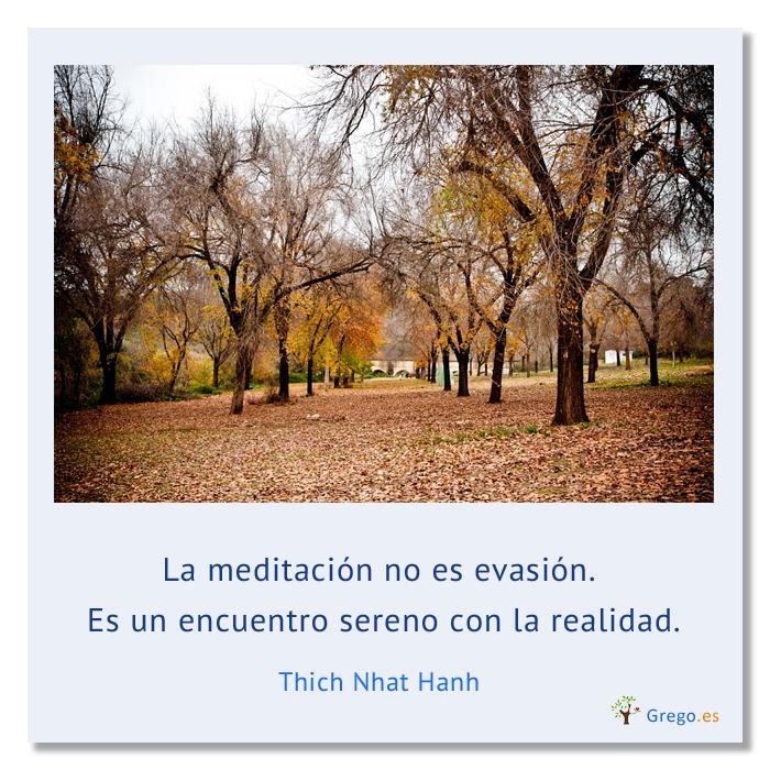 La Meditación No Es Evasión Por Thich Nhat Hanh Blog De