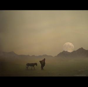 Pilgrim with Donkey