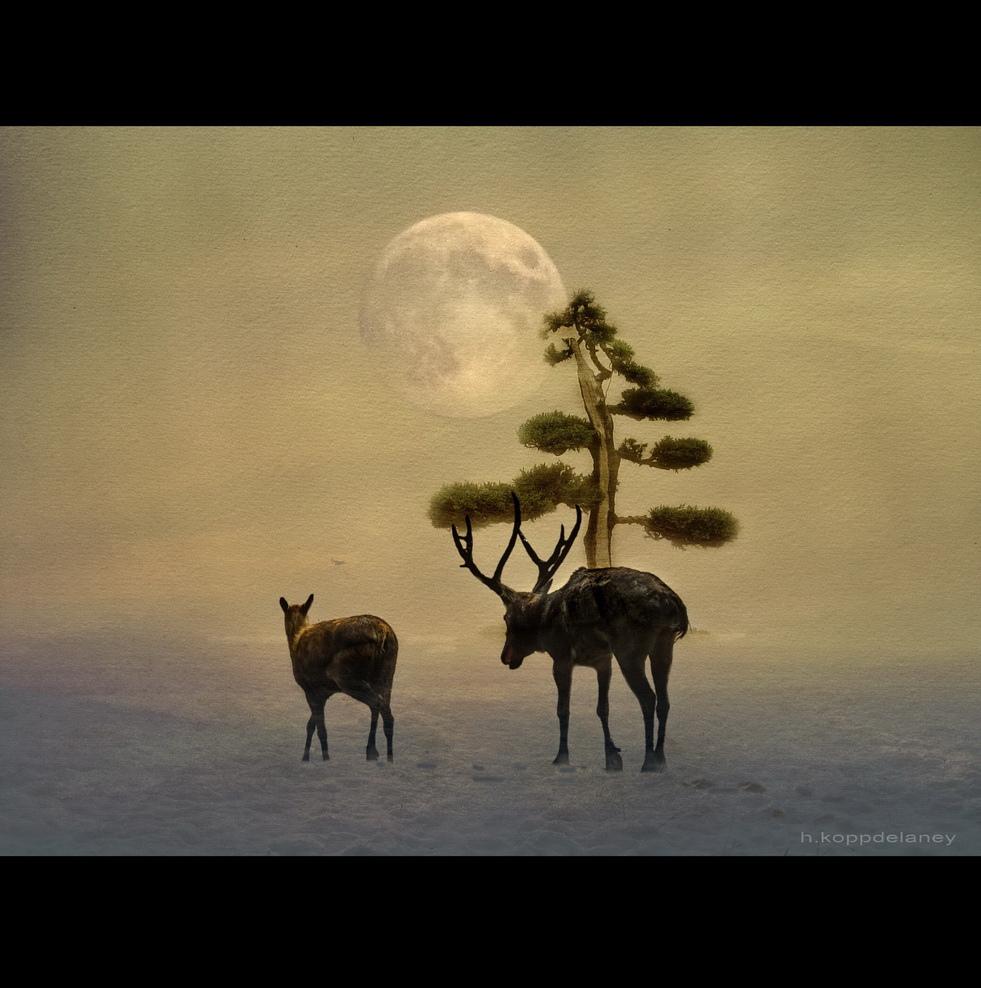 NOCHE DE PAZ – SILENT NIGHT, por Bullstar
