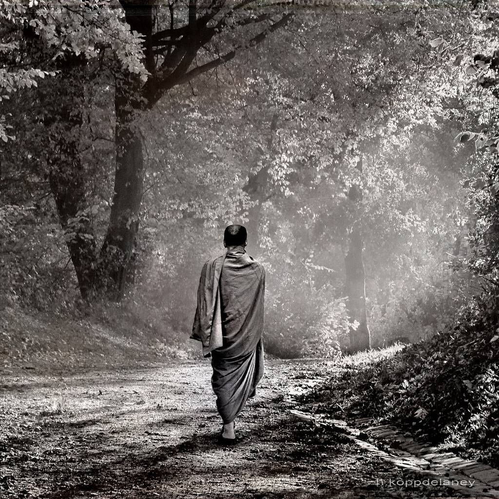 MEDITACIÓN CAMINANDO, por Thich Nhat Hanh