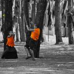 LOS CINCO ELEMENTOS, por Thich Nhat Hanh