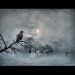 DISCERNIR O SUFRIR, por Antonio Blay