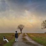 REALIDAD Y ESCAPE, por David Brazier