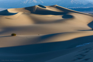 Mesquite Flat Sand Dunes  at sunrise 25 Feb 2013 in Death Valley