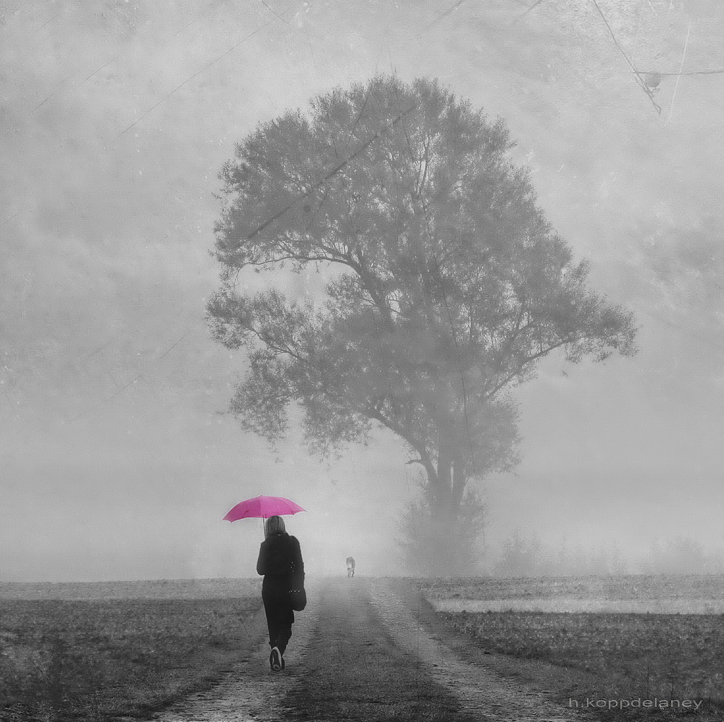 LA VIDA ES COMO LA NEBLINA, por Mumon Gensen