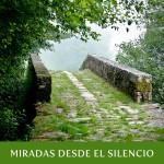 """LIBRO DEL BLOG """"MIRADAS DESDE EL SILENCIO"""" 2013-2014"""