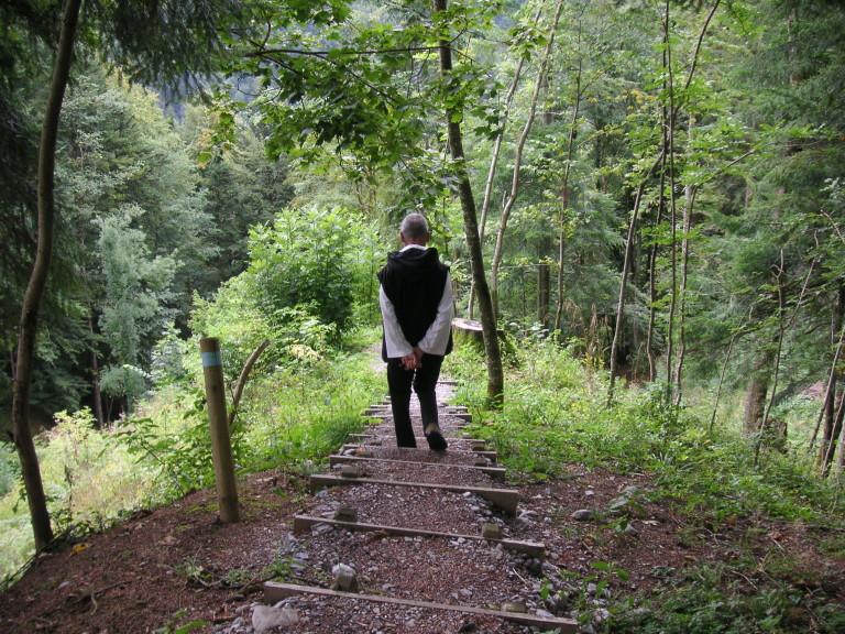 UN SOLO CORAZÓN por David Steindl-Rast
