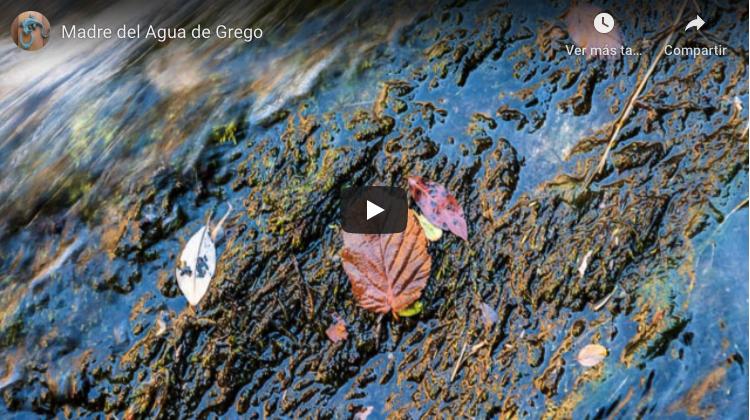 NACER ES RESPIRAR LA LUZ, Vídeo sobre Madre del Agua